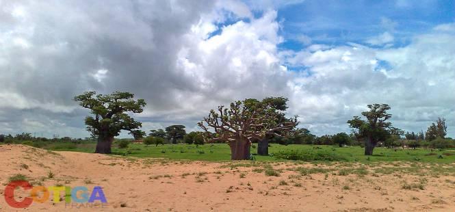 Image Vacances au Sénégal avantages