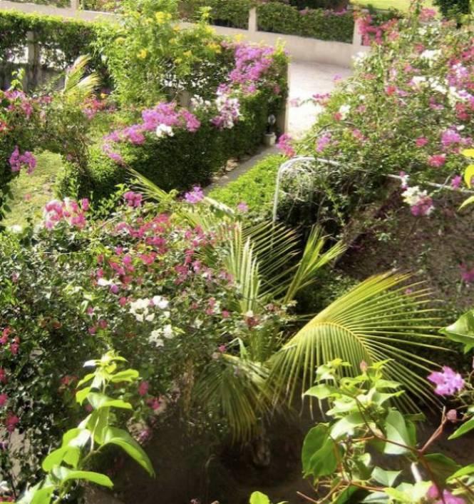 Photo 10 du Le jardin de la maison