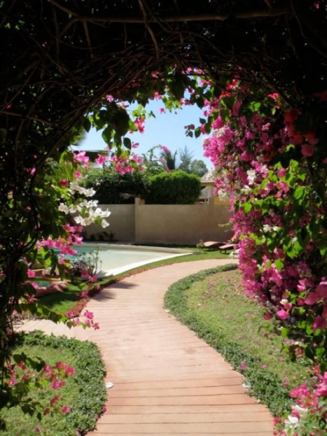 Photo 1 du Le jardin de la maison