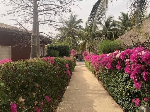 Photo 11 du La résidence - Les jardins de Popenguine à Saly, Sénégal